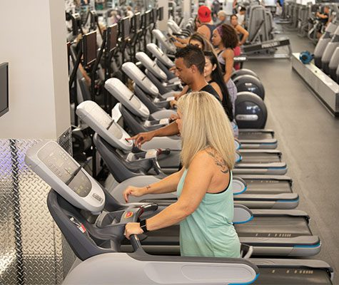 gym members on treadmills and other cardio machines